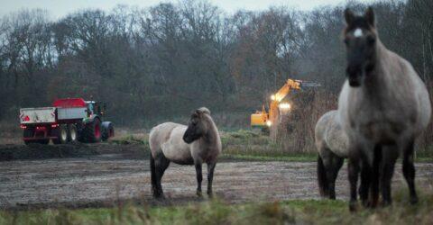 machine en paarde op de voorgrond